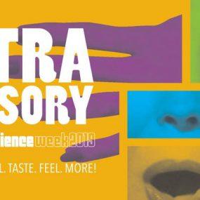 10 August 2019 0 – Extra Sensory