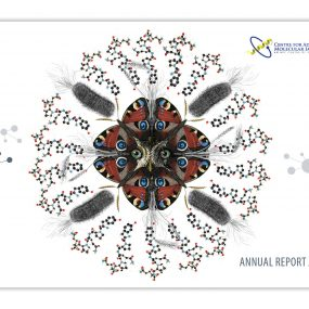 Imaging CoE Annual Report 2019