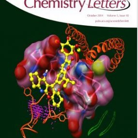 Cyclic Penta- and Hexa- Leucine Peptides Without N-Methylation Are Orally Absorbed