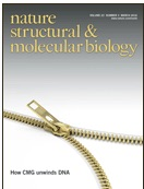 Structural basis for therapeutic inhibition of complement C5