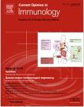 MR1 presentation of vitamin B-based metabolite ligands