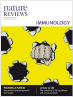 Perforin and granzymes: function, dysfunction and human pathology