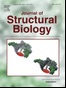 Local regularization of tilt projections reduces artifacts in electron tomography, Journal of Structural Biology