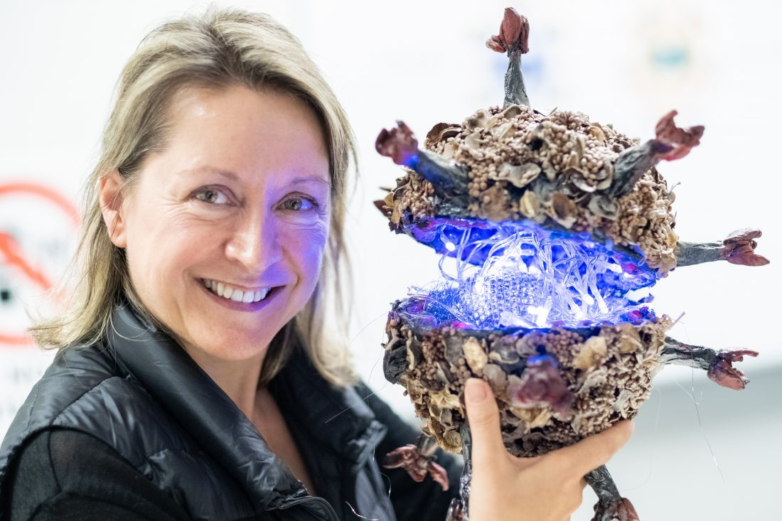 Saturday October 26 2019 – Sensory Science – An Exhibition to Stimulate the Senses (Perth)