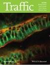 The aPKC/Par3/Par6 polarity complex and membrane order are functionally inter-dependent in epithelia during vertebrate organogenesis