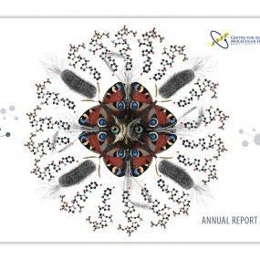 Imaging CoE Annual Report 2019